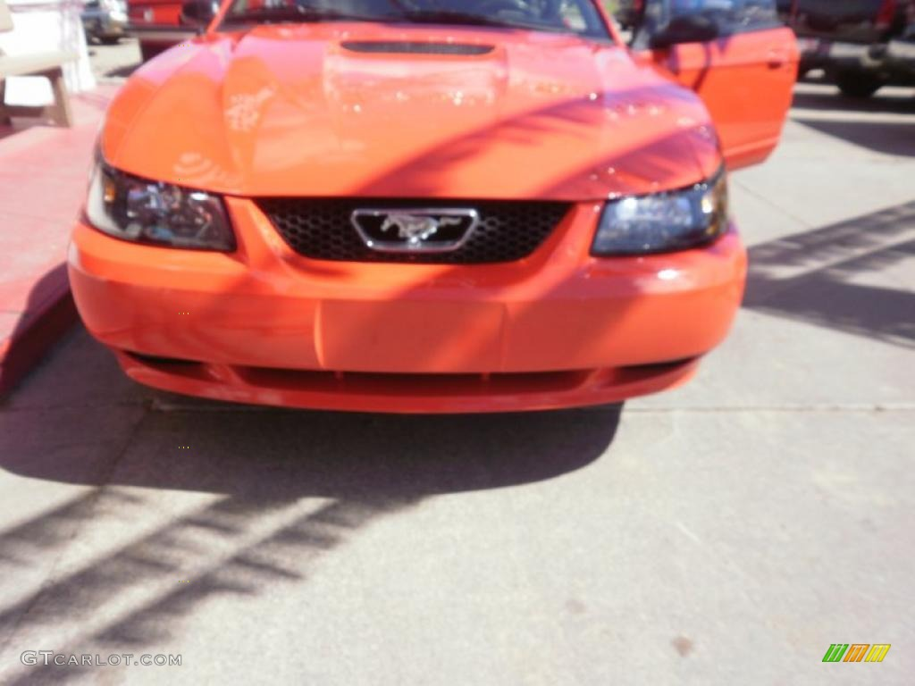 2000 Mustang GT Coupe - Performance Red / Dark Charcoal photo #28