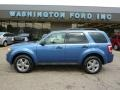 2009 Sport Blue Metallic Ford Escape XLT V6 4WD  photo #1