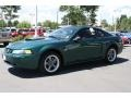 2001 Dark Highland Green Ford Mustang GT Coupe  photo #5