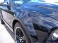 2007 Black/Gold Stripe Ford Mustang Shelby GT-H Convertible  photo #14