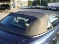 2001 True Blue Metallic Ford Mustang GT Convertible  photo #36