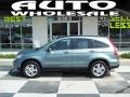 2010 Opal Sage Metallic Honda CR-V EX-L  photo #1