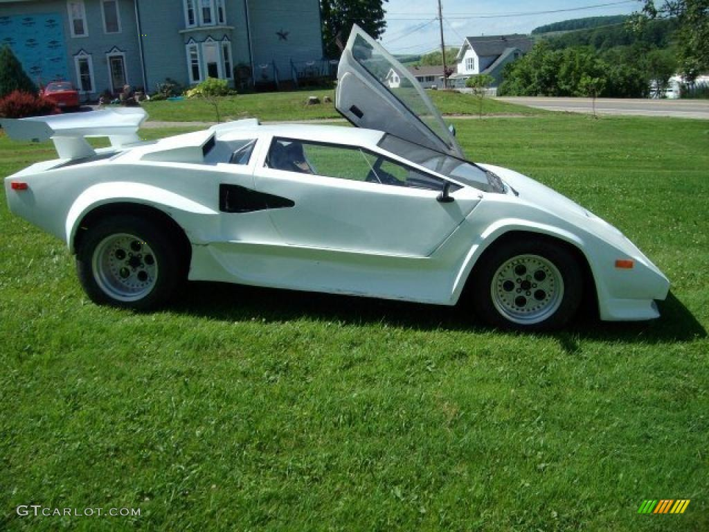 Car color kit - 1985 Fiero Lamborghini Kit Car White Gray Photo 1