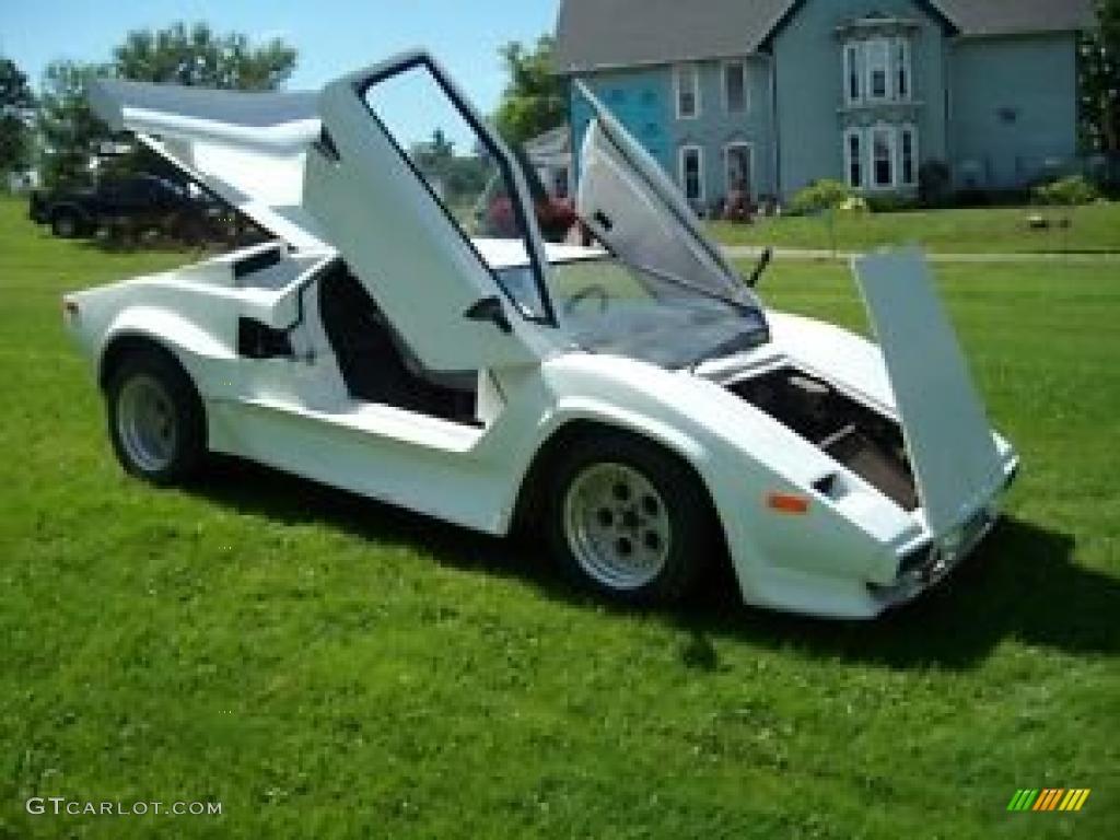 Car color kit - 1985 Fiero Lamborghini Kit Car White Gray Photo 3