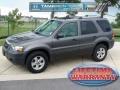 2006 Dark Shadow Grey Metallic Ford Escape XLT V6  photo #1