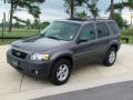 2006 Dark Shadow Grey Metallic Ford Escape XLT V6  photo #14