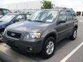 2006 Dark Shadow Grey Metallic Ford Escape XLT V6  photo #47