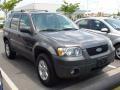 2006 Dark Shadow Grey Metallic Ford Escape XLT V6  photo #48