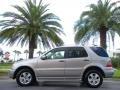 Pewter Metallic 2005 Mercedes-Benz ML Gallery