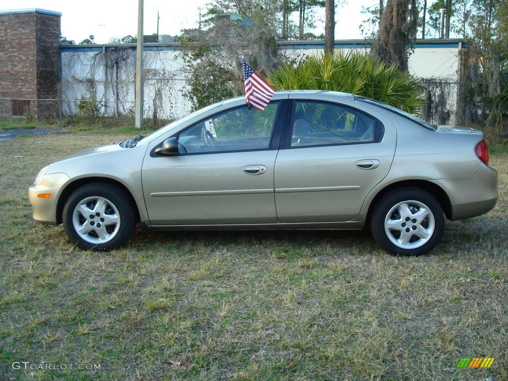 2002 light almond pearl metallic dodge neon se 3523476. Black Bedroom Furniture Sets. Home Design Ideas