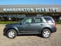 2009 Black Pearl Slate Metallic Ford Escape XLT 4WD  photo #1