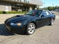 2001 Black Ford Mustang GT Convertible  photo #8