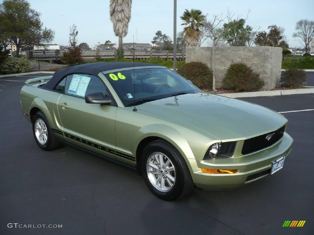 2006 Legend Lime Metallic Ford Mustang V6 Deluxe