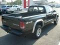 2004 Black Dodge Dakota Sport Club Cab 4x4  photo #9