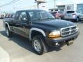 2004 Black Dodge Dakota Sport Club Cab 4x4  photo #11