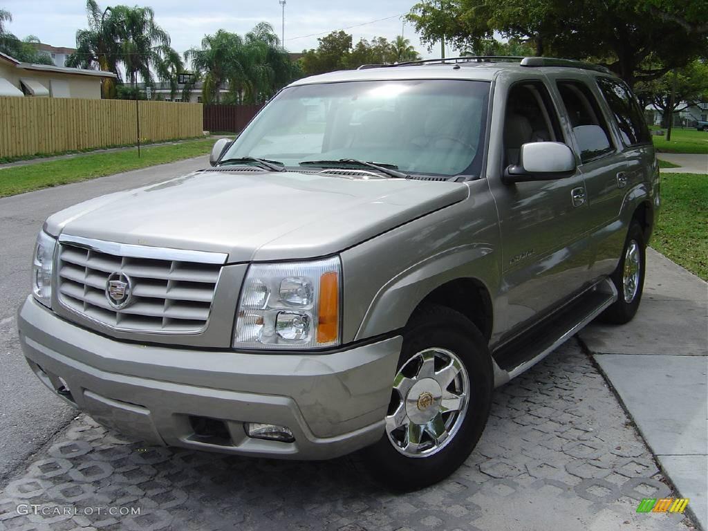 2002 silver sand cadillac escalade 354251 car color galleries for Cadillac escalade interior colors