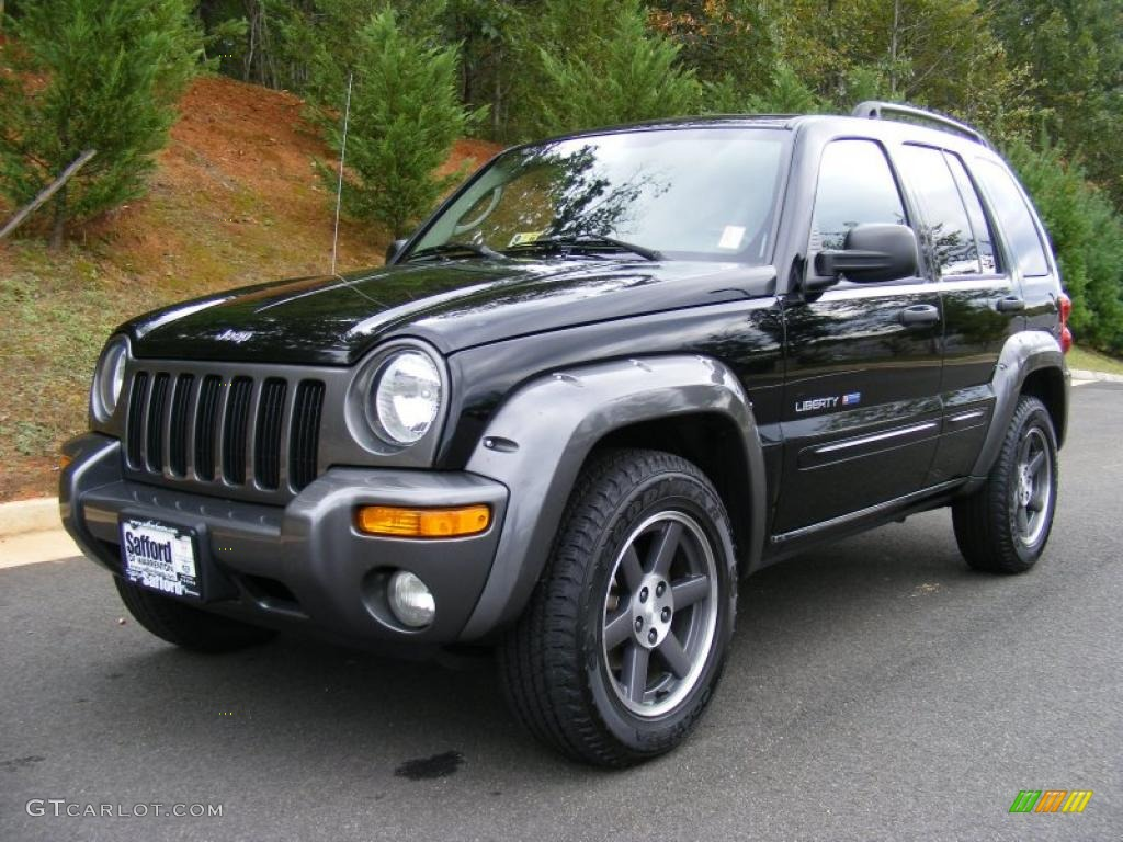 2003 Black Clearcoat Jeep Liberty Freedom Edition 4x4 37638157