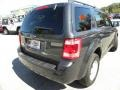 2009 Black Pearl Slate Metallic Ford Escape XLT V6  photo #15