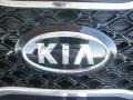 2011 Bright Silver Kia Sorento SX V6  photo #28
