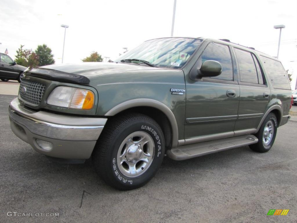 2001 estate green metallic ford expedition eddie bauer. Black Bedroom Furniture Sets. Home Design Ideas