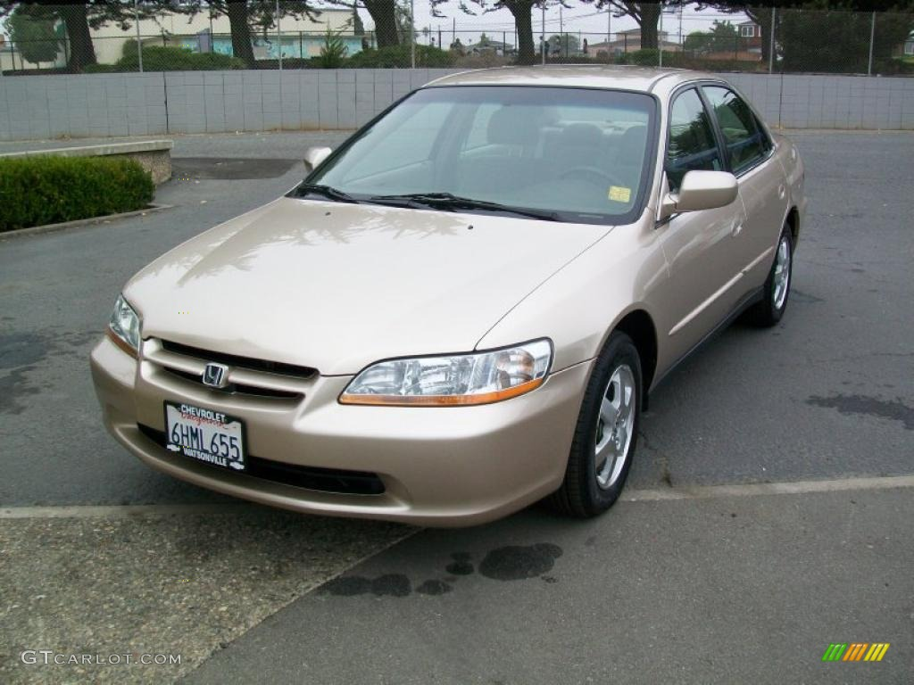 Honda Accord 2000 Gold