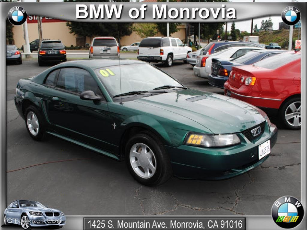 2001 dark highland green ford mustang v6 coupe 38342297. Black Bedroom Furniture Sets. Home Design Ideas