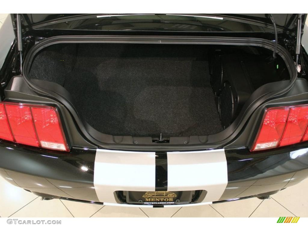 2006 Ford Mustang GT Premium Coupe Trunk Photo #38696477