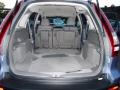 Gray Trunk Photo for 2009 Honda CR-V #39220770