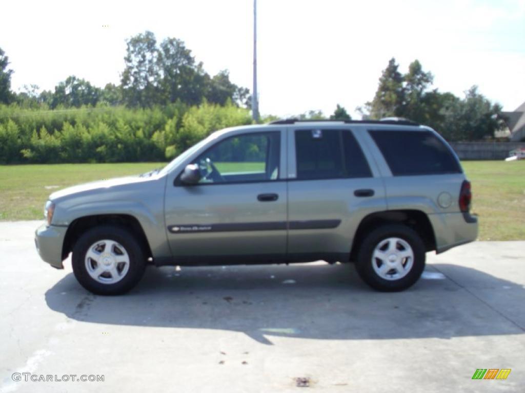 2003 Silver Green Metallic Chevrolet Trailblazer Ls