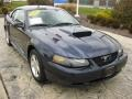 2003 True Blue Metallic Ford Mustang V6 Coupe  photo #1