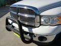 2002 Bright White Dodge Ram 1500 SLT Quad Cab  photo #11