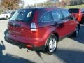 2009 Tango Red Pearl Honda CR-V LX 4WD  photo #7