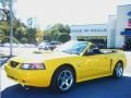 Screaming Yellow 2004 Ford Mustang Gallery