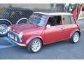 Red - Mini  Photo No. 11