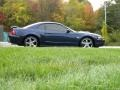 2003 True Blue Metallic Ford Mustang GT Coupe  photo #20