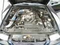 2003 True Blue Metallic Ford Mustang GT Coupe  photo #89