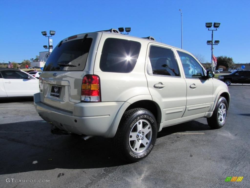 Gold Ash Metallic 2003 Ford Escape Limited Exterior Photo 40866637