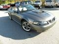 Dark Shadow Grey Metallic 2004 Ford Mustang Gallery