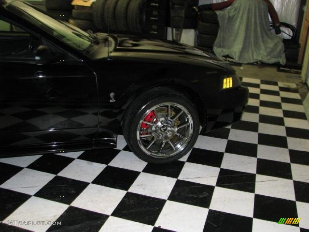 2001 Mustang Cobra Convertible - Black / Dark Charcoal photo #1