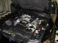 2001 Black Ford Mustang Cobra Convertible  photo #22
