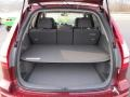 Gray Trunk Photo for 2010 Honda CR-V #41020915