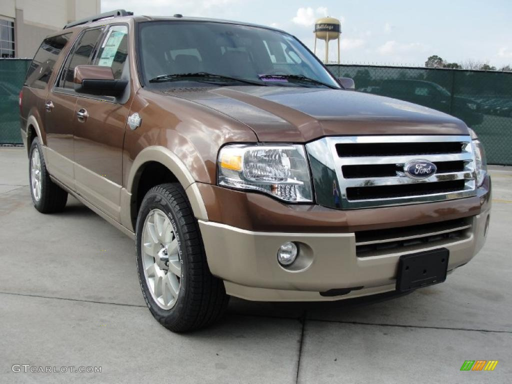 Golden bronze metallic ford expedition