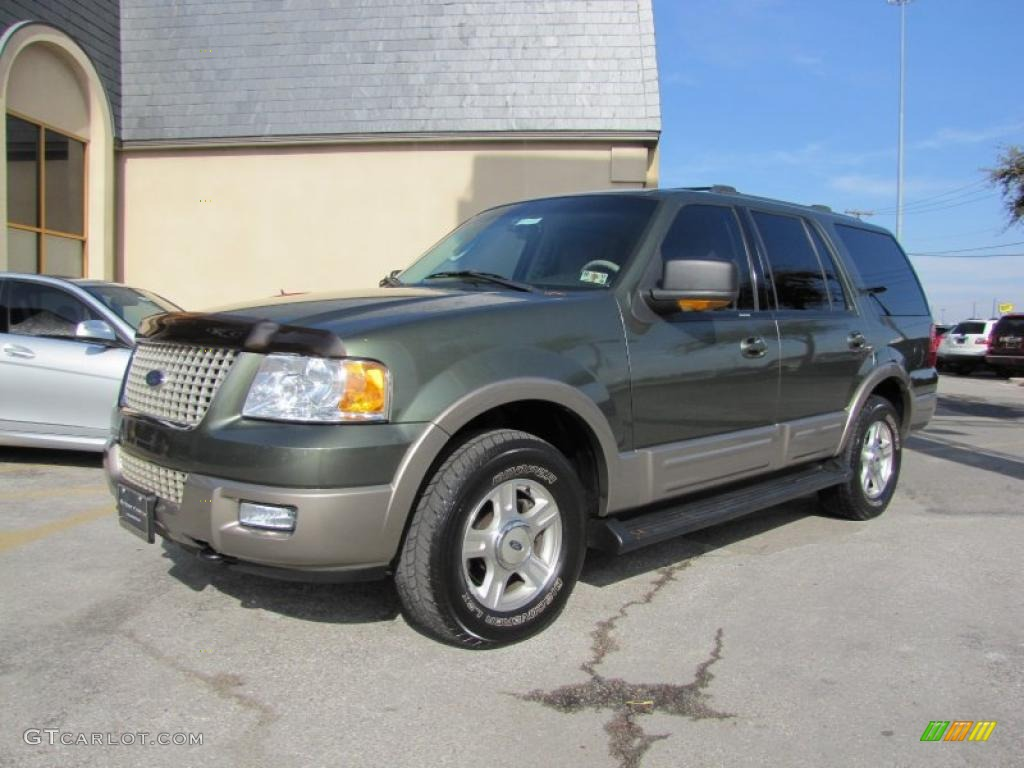 estate green metallic 2003 ford expedition eddie bauer 4x4 exterior. Cars Review. Best American Auto & Cars Review