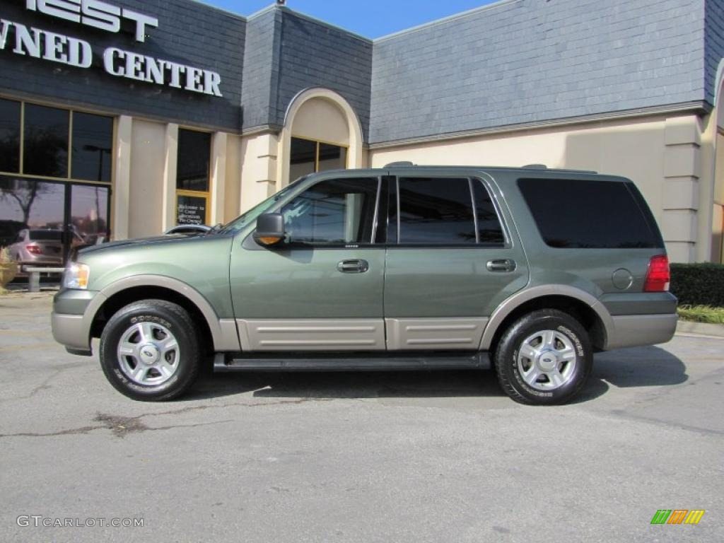 estate green metallic 2003 ford expedition eddie bauer 4x4. Black Bedroom Furniture Sets. Home Design Ideas