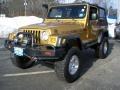 2003 Inca Gold Metallic Jeep Wrangler Rubicon 4x4 #42378549