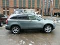 2010 Opal Sage Metallic Honda CR-V EX-L AWD  photo #5