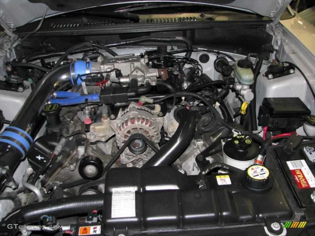 2003 Ford Mustang Gt Coupe 4 6 Liter Sohc 16 Valve V8 Engine Photo 42587086 Gtcarlot Com