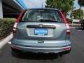 2010 Opal Sage Metallic Honda CR-V LX  photo #4