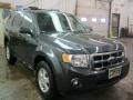2009 Black Pearl Slate Metallic Ford Escape XLT  photo #18