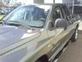 2006 Mineral Gray Metallic Dodge Ram 1500 SLT Quad Cab  photo #21